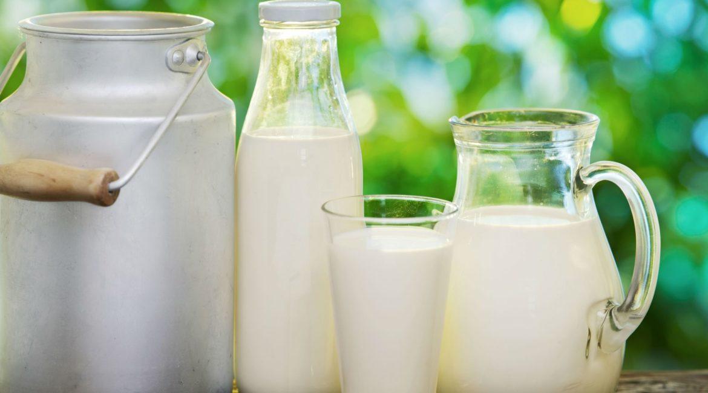 Пейте люди молоко, будете здоровы?